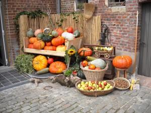 Halloween harvest pumpkins-939296_1920