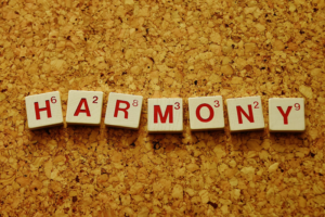 harmony is created from identifying your bliss and living it